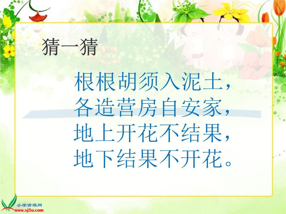 (人教新课标)五年级语文上册课件2落花生-6要素.ppt