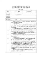 (大学生村官年度及试用期考.doc