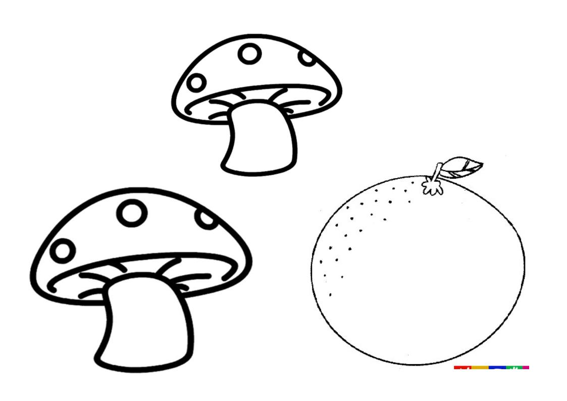 芹菜的画法步骤