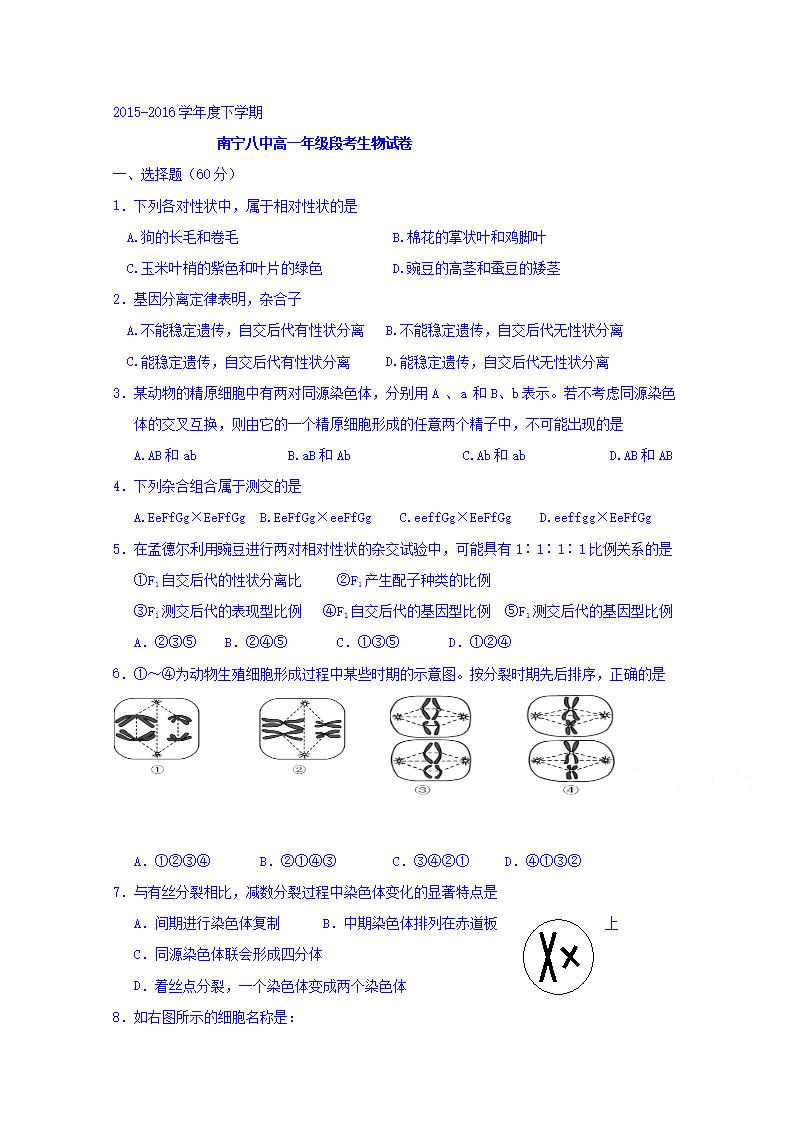 广西南宁市第八高一作文下学期期中段考初中试作文童年生物大全中学图片