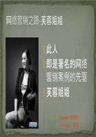 芙蓉姐姐网络营销案例分析课件精品.ppt