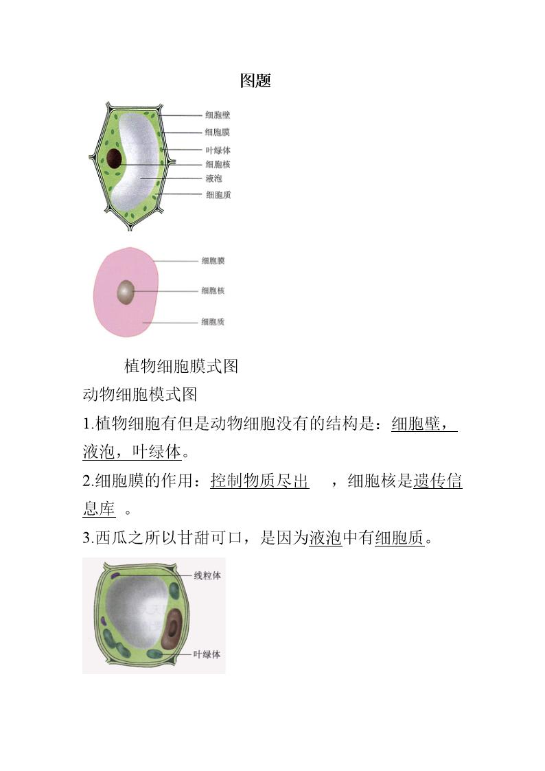 初中考复习资料初中人教图集(附题目)(生地版生物反绑体罚tk图片