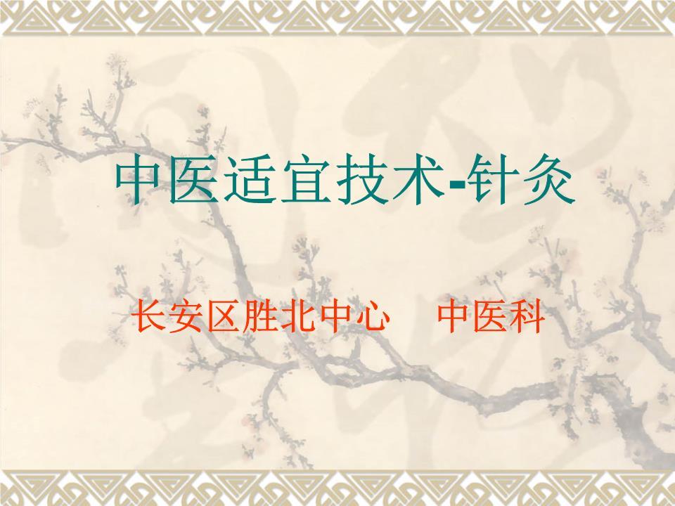 中医适宜技术 针灸概要.ppt